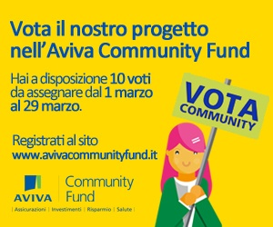 banner-dell-Aviva-Community-Fund-300x250